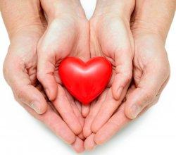 В школах города состоялся конкурс на присуждение педагогам знака «Ордена детских сердец»